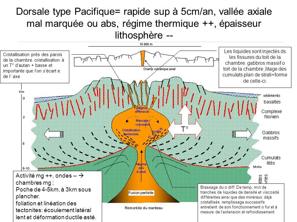 Dorsale type Pacifique= rapide sup à 5cm/an, vallée axiale mal marquée ou abs, régime thermique ++, épaisseur lithosphère -- Activité mg ++, ondes --