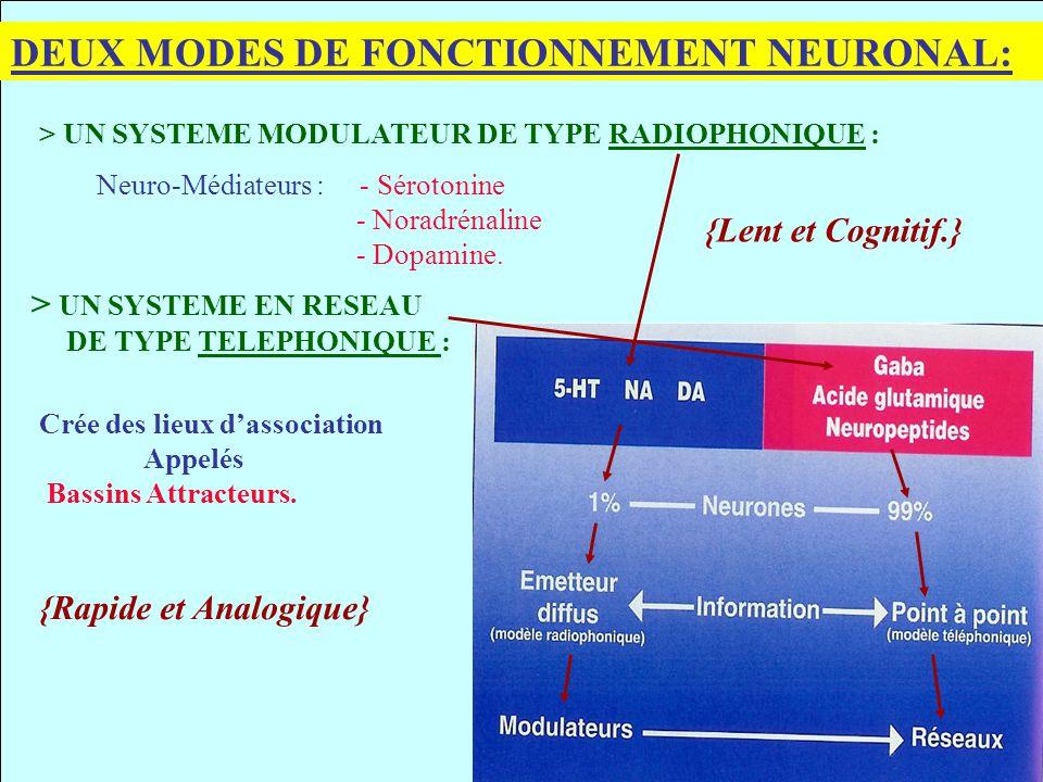 DEUX MODES DE FONCTIONNEMENT NEURONAL: > UN SYSTEME MODULATEUR DE TYPE RADIOPHONIQUE : Neuro-Médiateurs : - Sérotonine - Noradrénaline - Dopamine. > U