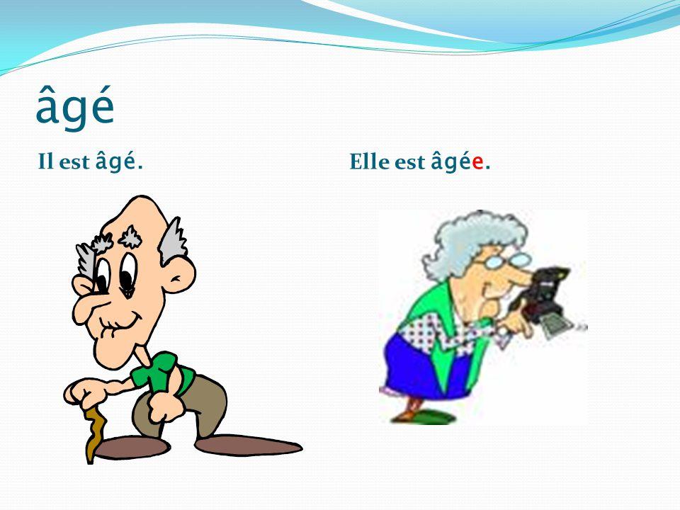 âgé Il est âgé. Elle est âgée.