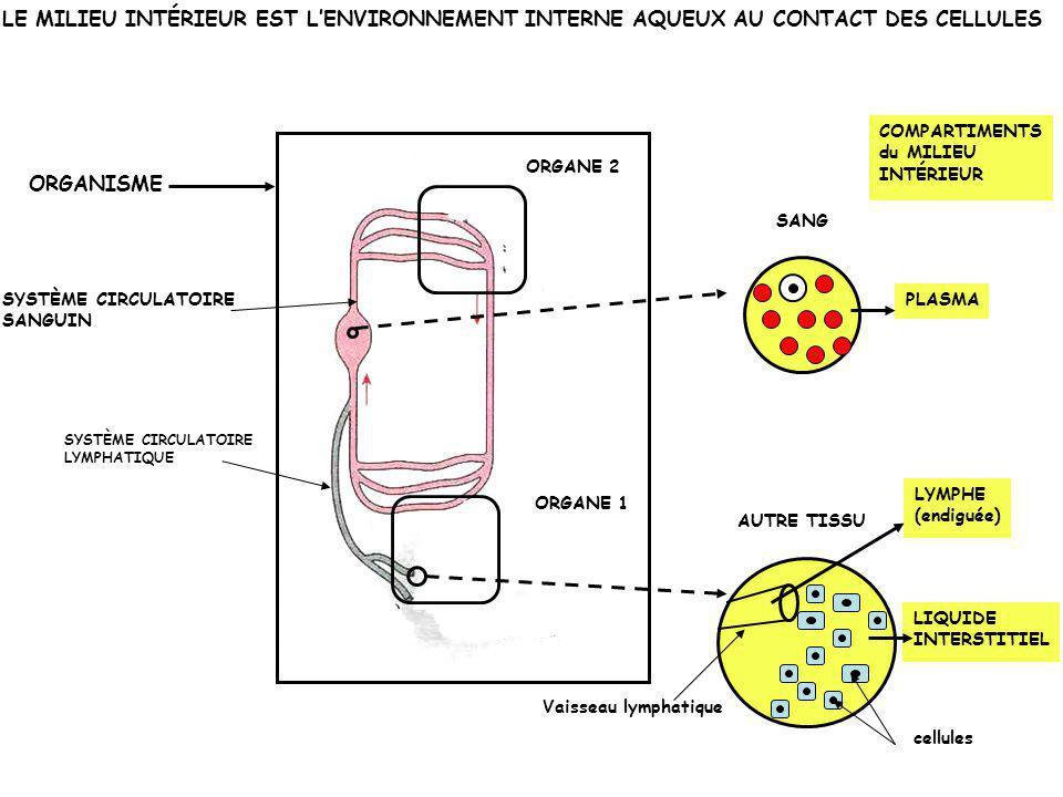 Principaux compartiments hydriques de l'organisme humain Volume hydrique total = 40 L, 60 % de la masse corporelle Liquide extracellulaire = milieu intérieur : 15 L, 37,5 % du volume hydrique total Liquide intracellulaire : 25 L, 62,5 % du volume hydrique total Liquide interstitiel : 12 L, 80 % du liquide extracellulaire (dont 3L endigué: la lymphe) Plasma sanguin : 3 L, 20 % du liquide extracellulaire Contenu en eau variable en fonction : de l'âge, de la composition et de la masse corporelles.