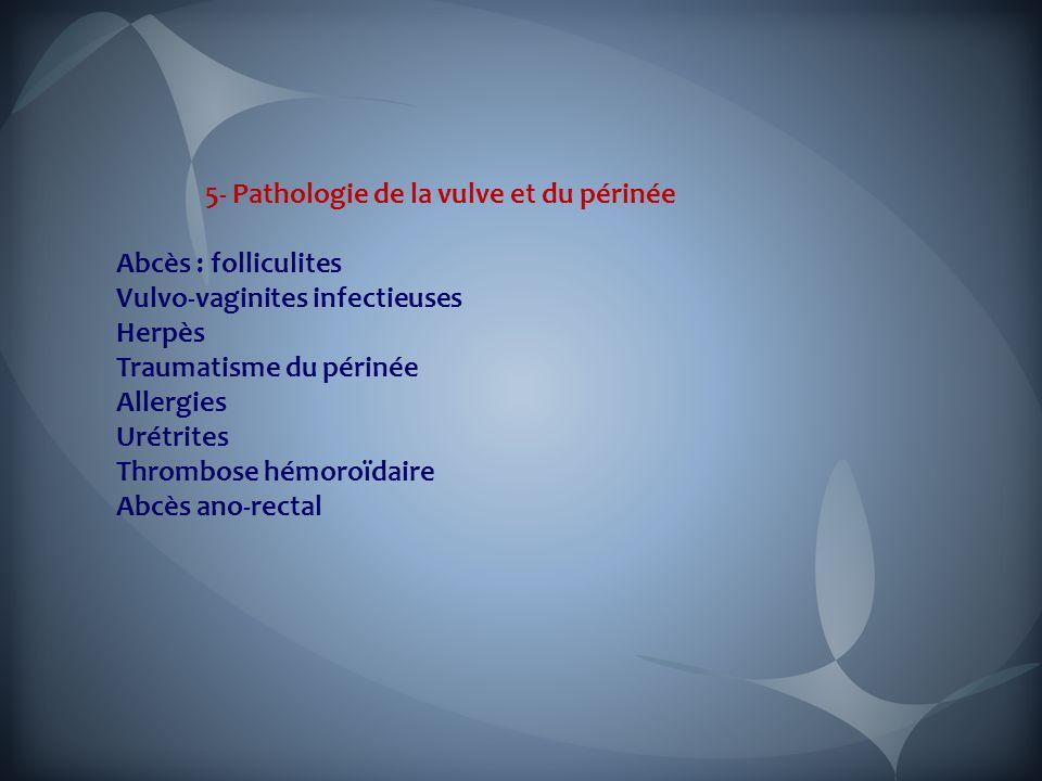 5- Pathologie de la vulve et du périnée Abcès : folliculites Vulvo-vaginites infectieuses Herpès Traumatisme du périnée Allergies Urétrites Thrombose hémoroïdaire Abcès ano-rectal