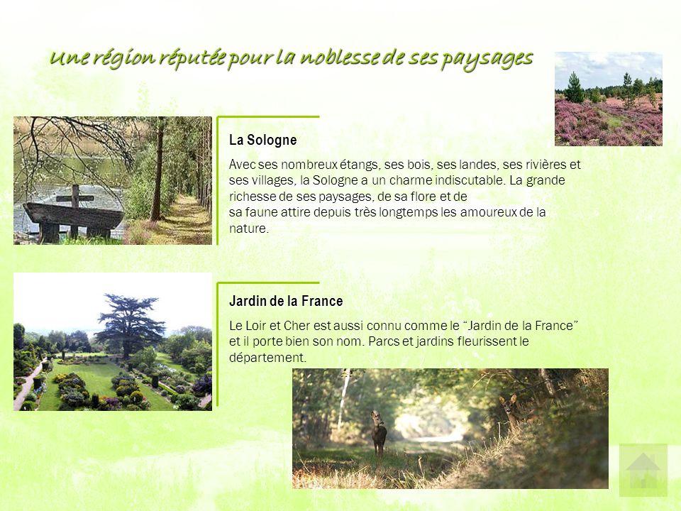 Une région réputée pour la noblesse de ses paysages La Sologne A vec ses nombreux étangs, ses bois, ses landes, ses rivières et ses villages, la Sologne a un charme indiscutable.