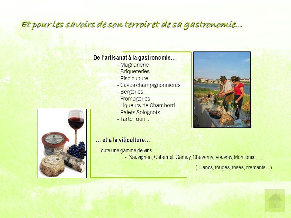 Et pour les savoirs de son terroir et de sa gastronomie… De l'artisanat à la gastronomie… - Magnanerie - Briqueteries - Pisciculture - Caves champignonnières - Bergeries - Fromageries - Liqueurs de Chambord - Palets Solognots - Tarte Tatin … … et à la viticulture… - Toute une gamme de vins - Sauvignon, Cabernet, Gamay, Cheverny,,Vouvray, Montlouis, ….