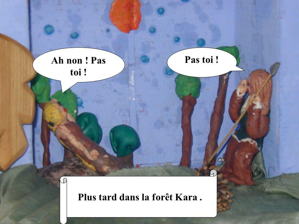 Ah non ! Pas toi ! Pas toi ! Plus tard dans la forêt Kara.