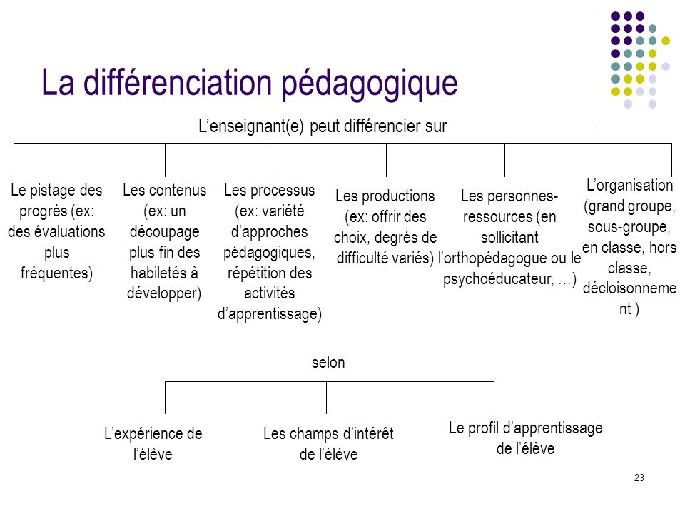 23 La différenciation pédagogique L'enseignant(e) peut différencier sur Les contenus (ex: un découpage plus fin des habiletés à développer) Les proces