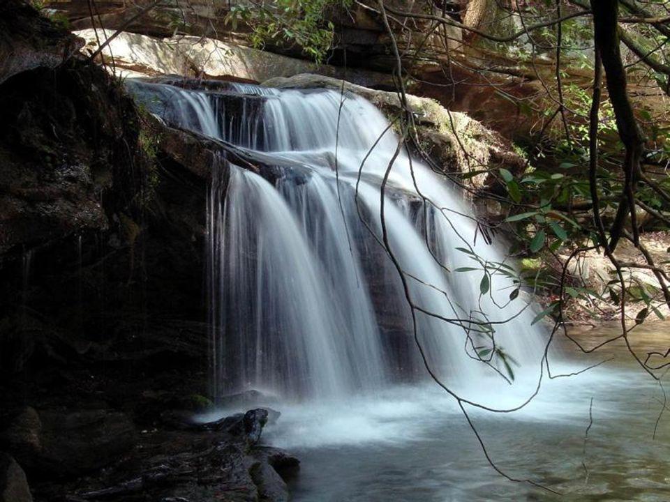 Rester assis(e)s au bord d'un étang ou d'un lac est un moment de tranquillité incomparable pour laisser son esprit vagabonder au fil de l'eau. Détende