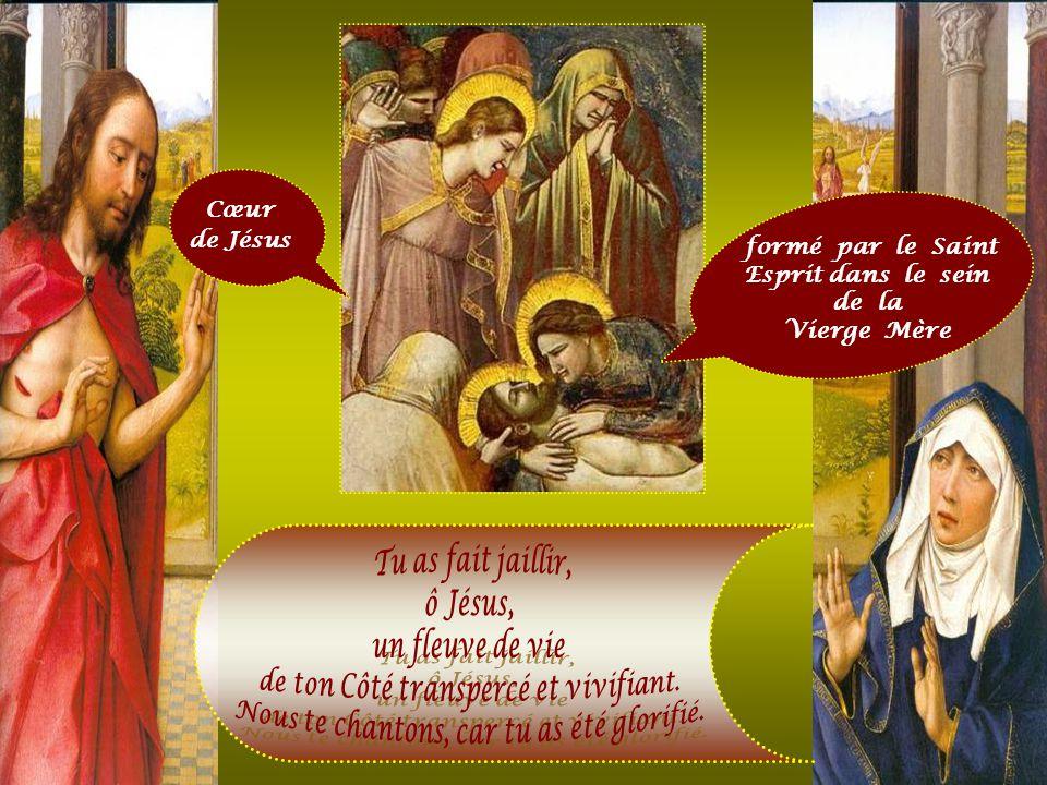 « Considère attentivement, toi qui as été racheté, quel est celui qui, pour toi, est suspendu à la croix, quelle est sa grandeur, sa sainteté, lui don