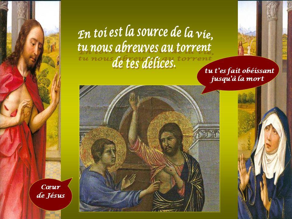 Jésus j'ai confiance en toi