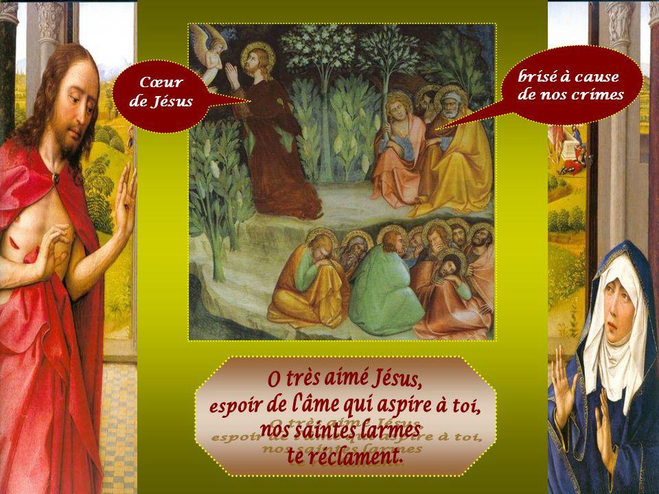 Cœur de Jésus rassasié d'opprobres