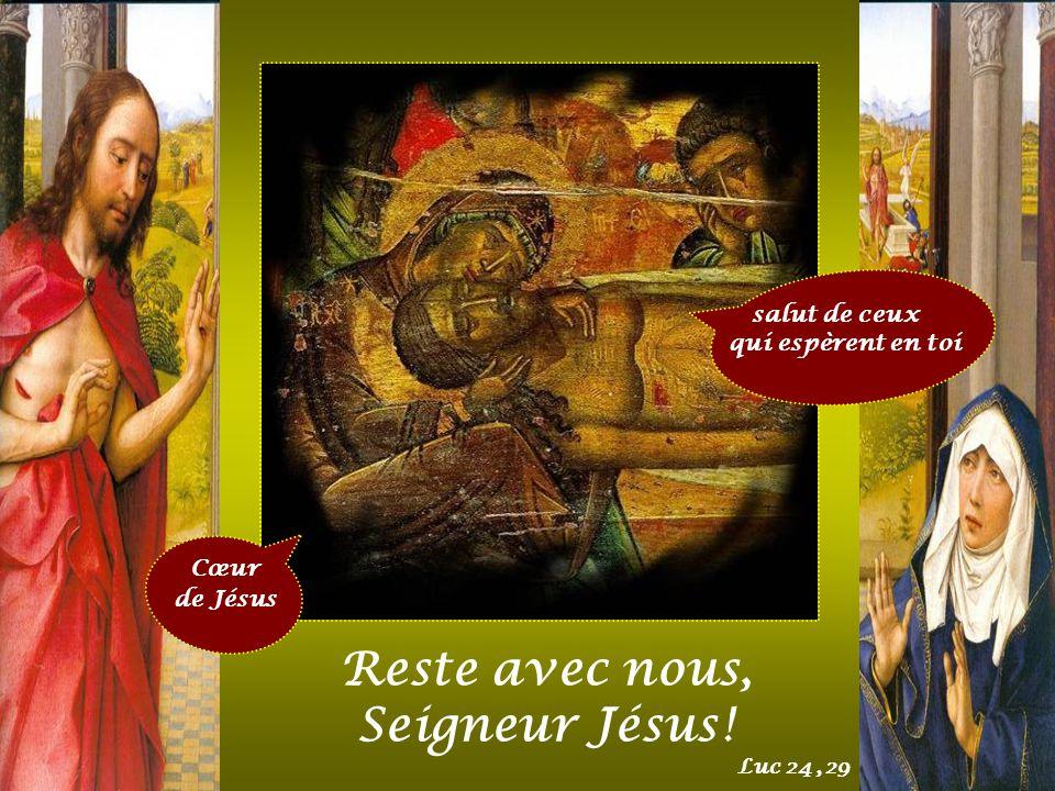 Cœur de Jésus brisé à cause de nos crimes