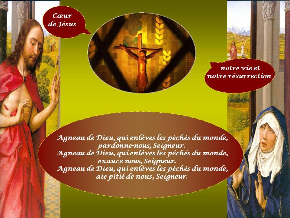 Cœur de Jésus fournaise ardente de charité