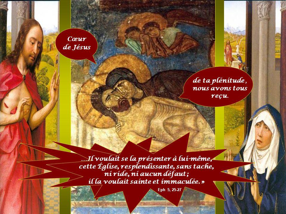 « Le Seigneur Jésus a aimé l'Église, il s'est livré pour elle ; il voulait la rendre sainte en la purifiant par le bain du baptême et la Parole de vie