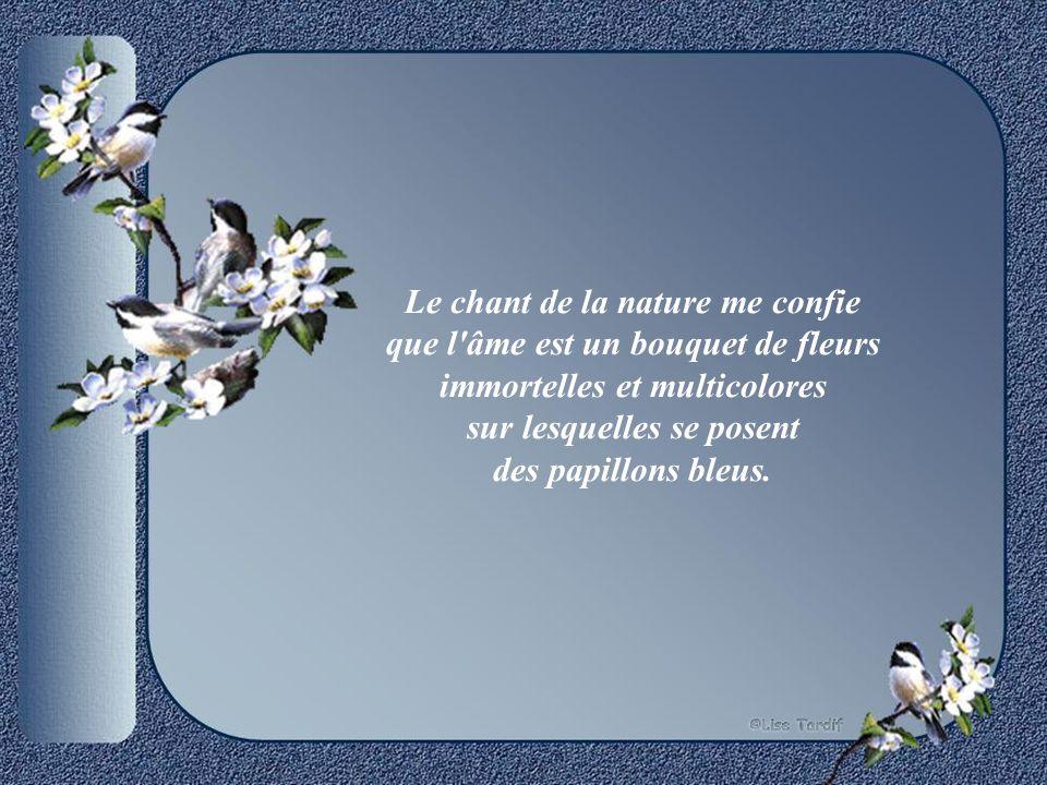 Le chant de la nature me confie que l âme est un bouquet de fleurs immortelles et multicolores sur lesquelles se posent des papillons bleus.