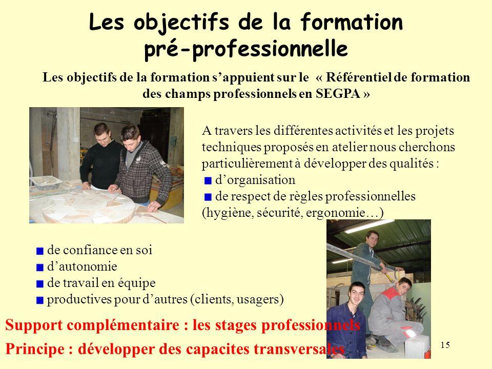 15 Les objectifs de la formation pré-professionnelle Les objectifs de la formation s'appuient sur le « Référentiel de formation des champs professionn