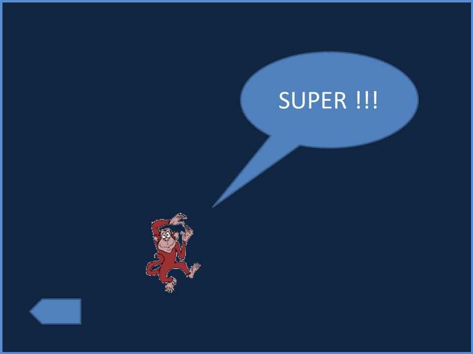 SUPER !!!