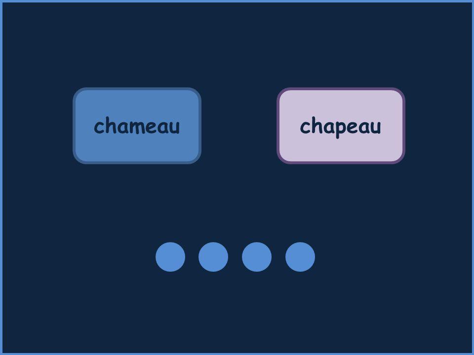 chameauchapeau