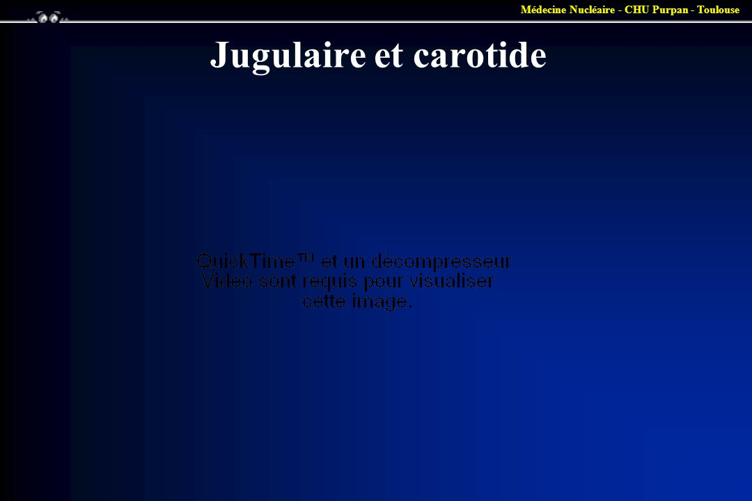 Médecine Nucléaire - CHU Purpan - Toulouse Jugulaire et carotide