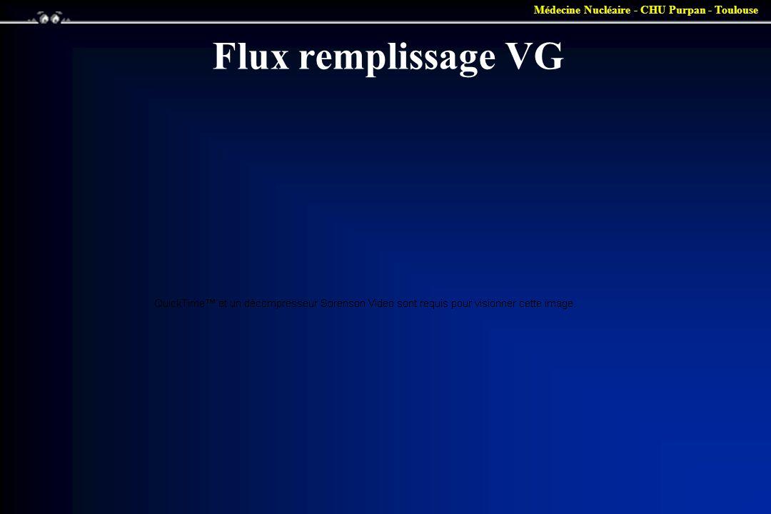Médecine Nucléaire - CHU Purpan - Toulouse Flux remplissage VG