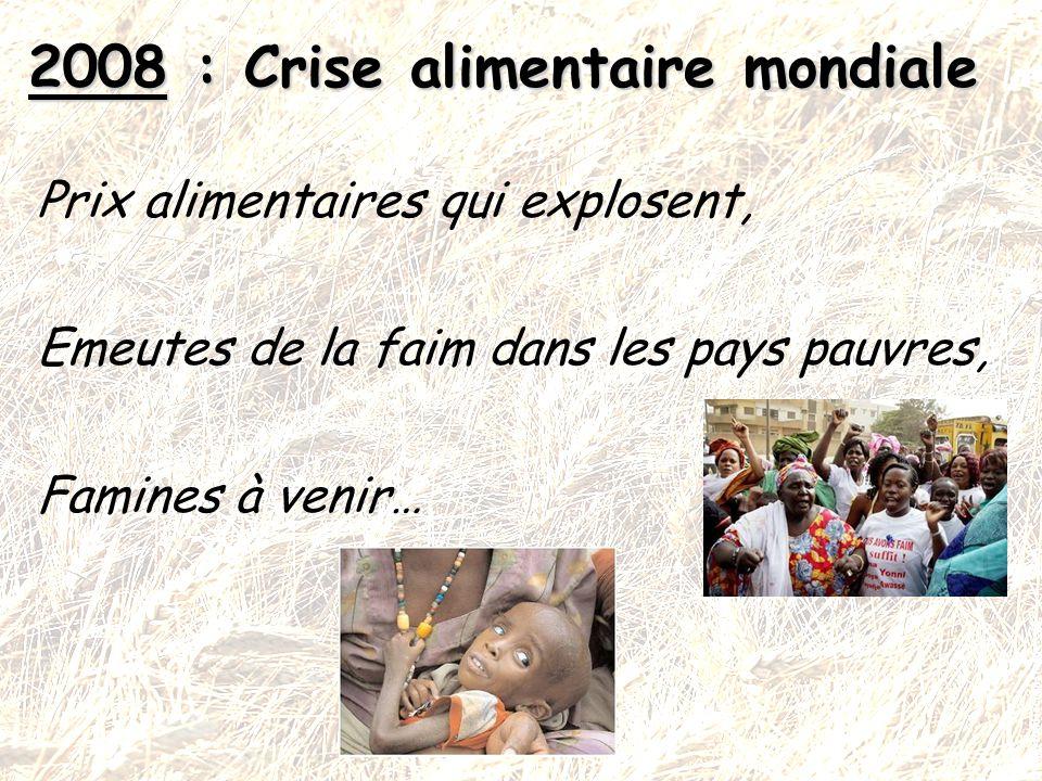 Prix alimentaires qui explosent, Emeutes de la faim dans les pays pauvres, Famines à venir… 2008 : Crise alimentaire mondiale