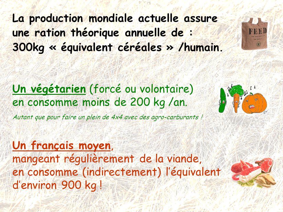 La production mondiale actuelle assure une ration théorique annuelle de : 300kg « équivalent céréales » /humain. Un végétarien (forcé ou volontaire) e