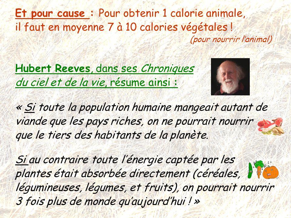 Et pour cause : Pour obtenir 1 calorie animale, il faut en moyenne 7 à 10 calories végétales ! (pour nourrir l'animal) Hubert Reeves, dans ses Chroniq