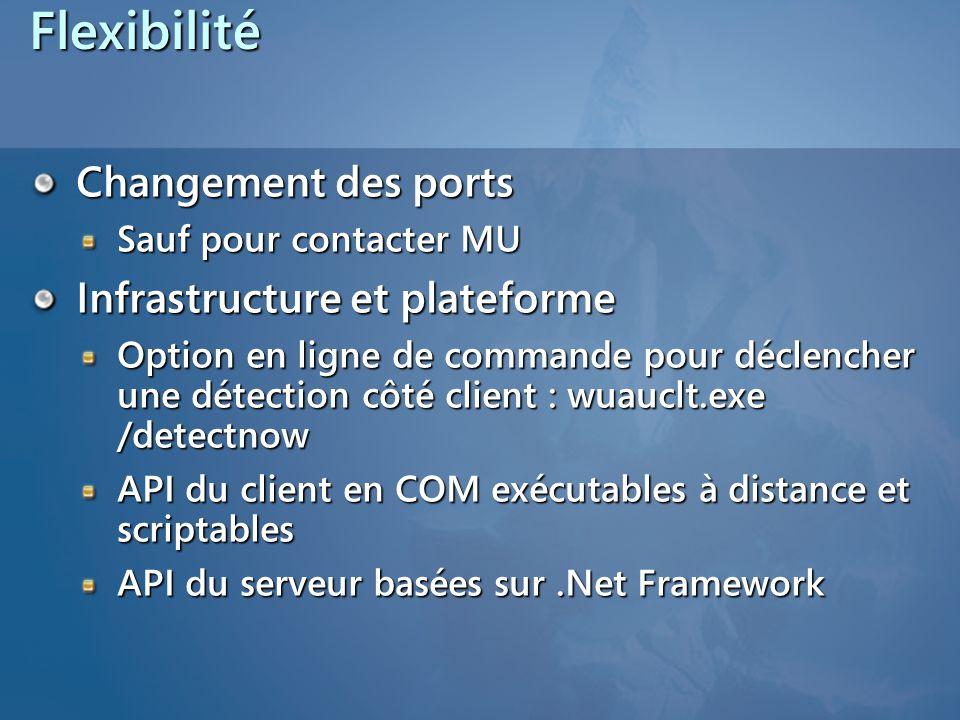Flexibilité Changement des ports Sauf pour contacter MU Infrastructure et plateforme Option en ligne de commande pour déclencher une détection côté cl