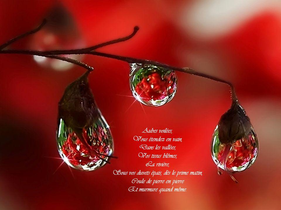 Pluie aux gouttes rondes et claires, Bulles de joie et de lumière, Le sinueux ruisseau gaiement vous fait accueil, Car tout l automne en deuil Le jonche en vain de mousse et de feuilles tombées.