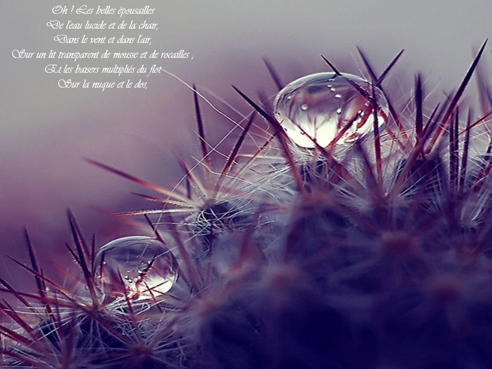 Mais néanmoins, oui, même alors En ses anses, sous les broussailles Elle tressaille Et se ranime encore, Quand la belle gardeuse d oies Lui livre ingénument la joie Brusque et rouge de tout son corps.