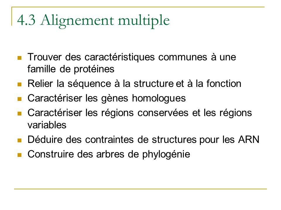 4.3 Alignement multiple  Trouver des caractéristiques communes à une famille de protéines  Relier la séquence à la structure et à la fonction  Cara