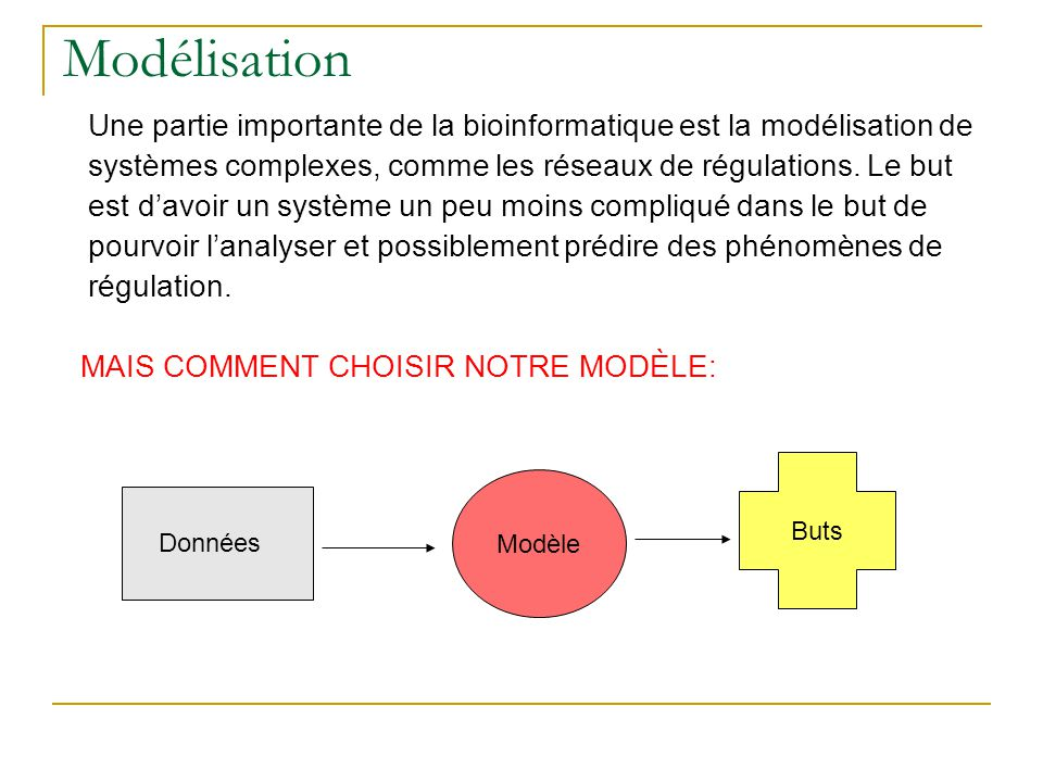Modélisation Une partie importante de la bioinformatique est la modélisation de systèmes complexes, comme les réseaux de régulations. Le but est d'avo