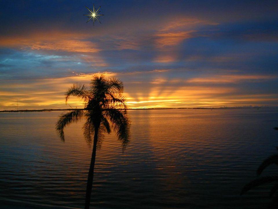 Et n'oublie jamais: aujourd'hui, pour toi, Une étoile s'est levée au firmament.