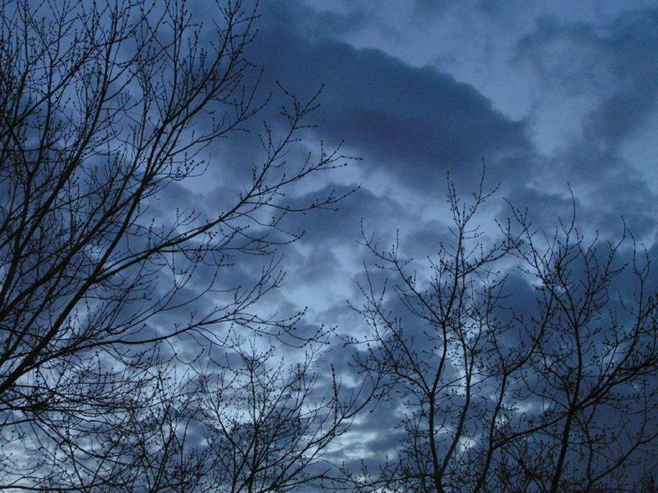 Il fait sombre dans ta vie, Tu te sens seul, triste et abandonné. Pas une seule lueur d'espoir pour déchirer les ténèbres.