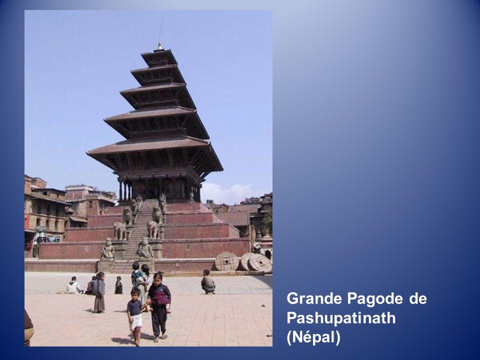 Rue de Pashupatinah (Népal)