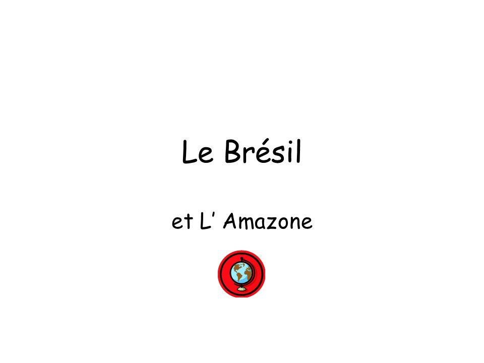 Le Brésil et L' Amazone