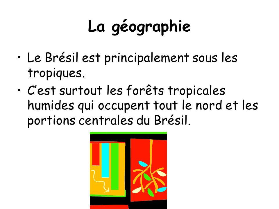 La géographie •Le Brésil est principalement sous les tropiques. •C'est surtout les forêts tropicales humides qui occupent tout le nord et les portions