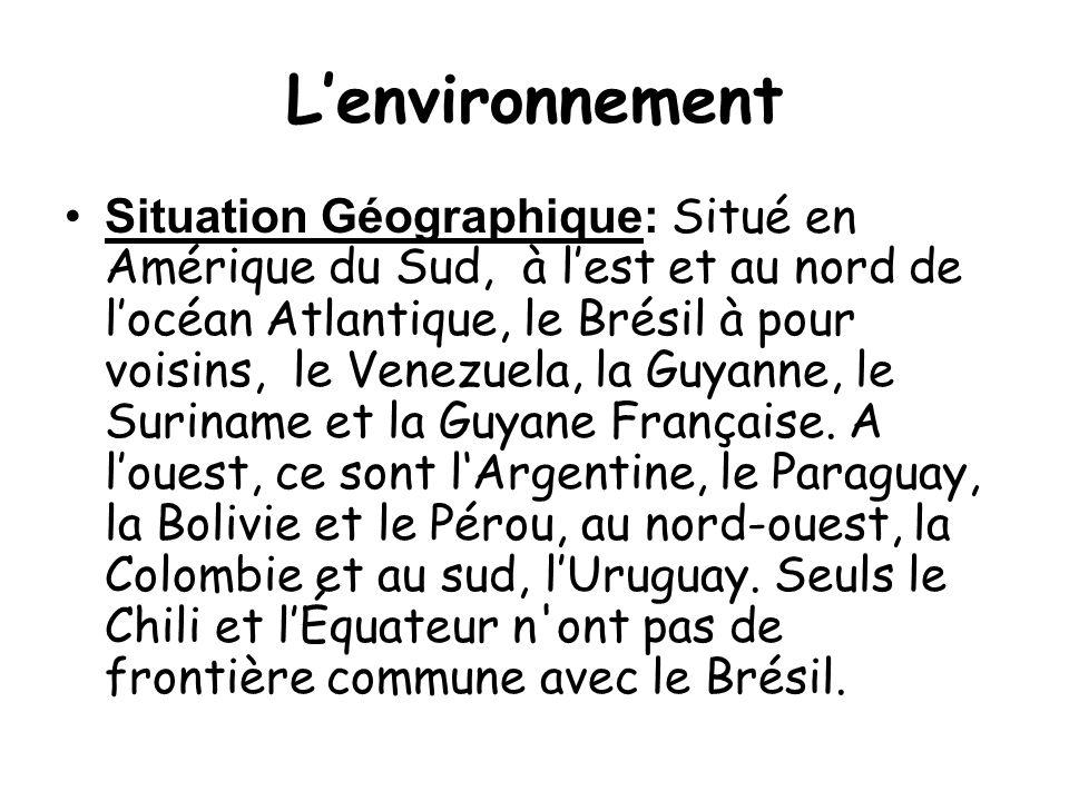 L'environnement •Situation Géographique: Situé en Amérique du Sud, à l'est et au nord de l'océan Atlantique, le Brésil à pour voisins, le Venezuela, la Guyanne, le Suriname et la Guyane Française.