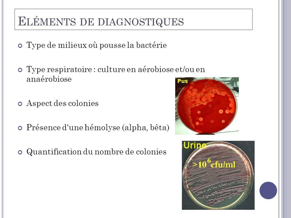 E LÉMENTS DE DIAGNOSTIQUES Type de milieux où pousse la bactérie Type respiratoire : culture en aérobiose et/ou en anaérobiose Aspect des colonies Présence d une hémolyse (alpha, bêta) Quantification du nombre de colonies