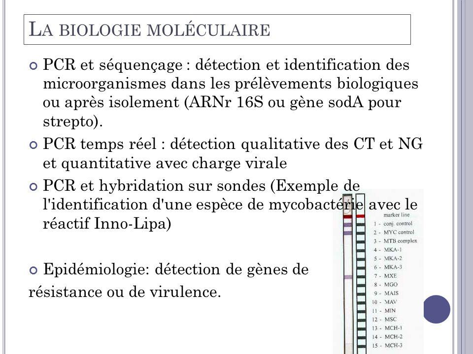 L A BIOLOGIE MOLÉCULAIRE PCR et séquençage : détection et identification des microorganismes dans les prélèvements biologiques ou après isolement (ARNr 16S ou gène sodA pour strepto).