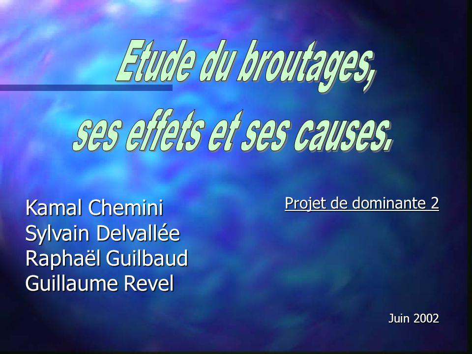 Projet de dominante 2 Juin 2002 Kamal Chemini Sylvain Delvallée Raphaël Guilbaud Guillaume Revel