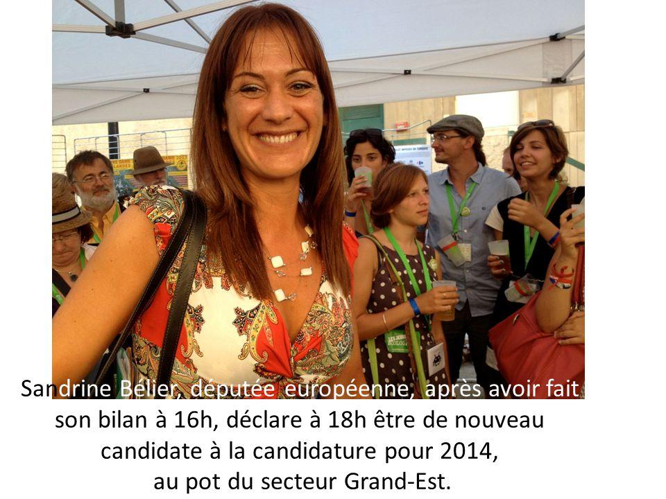 Sandrine Bélier, députée européenne, après avoir fait son bilan à 16h, déclare à 18h être de nouveau candidate à la candidature pour 2014, au pot du s