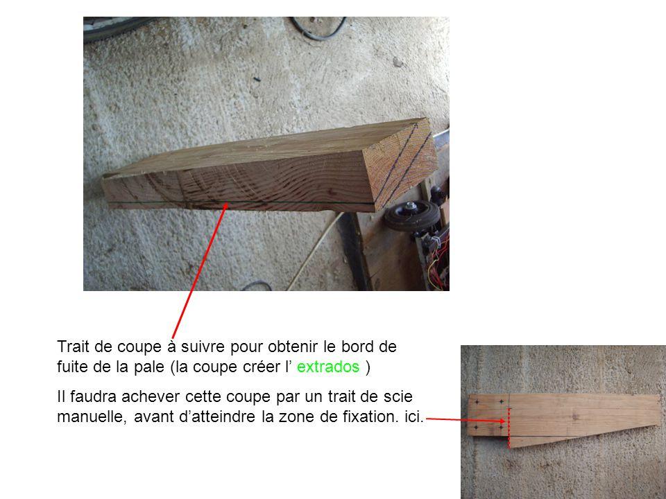 Trait de coupe à suivre pour obtenir le bord de fuite de la pale (la coupe créer l' extrados ) Il faudra achever cette coupe par un trait de scie manu