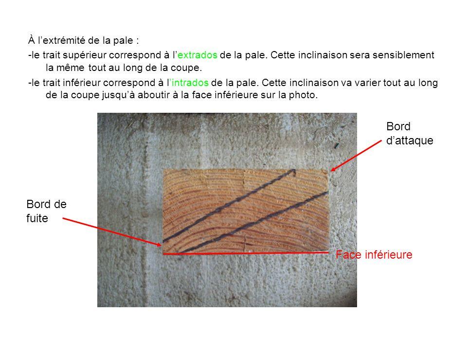 À l'extrémité de la pale : -le trait supérieur correspond à l'extrados de la pale. Cette inclinaison sera sensiblement la même tout au long de la coup