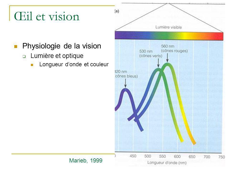 Œil et vision  Physiologie de la vision  Lumière et optique  Longueur d'onde et couleur Marieb, 1999