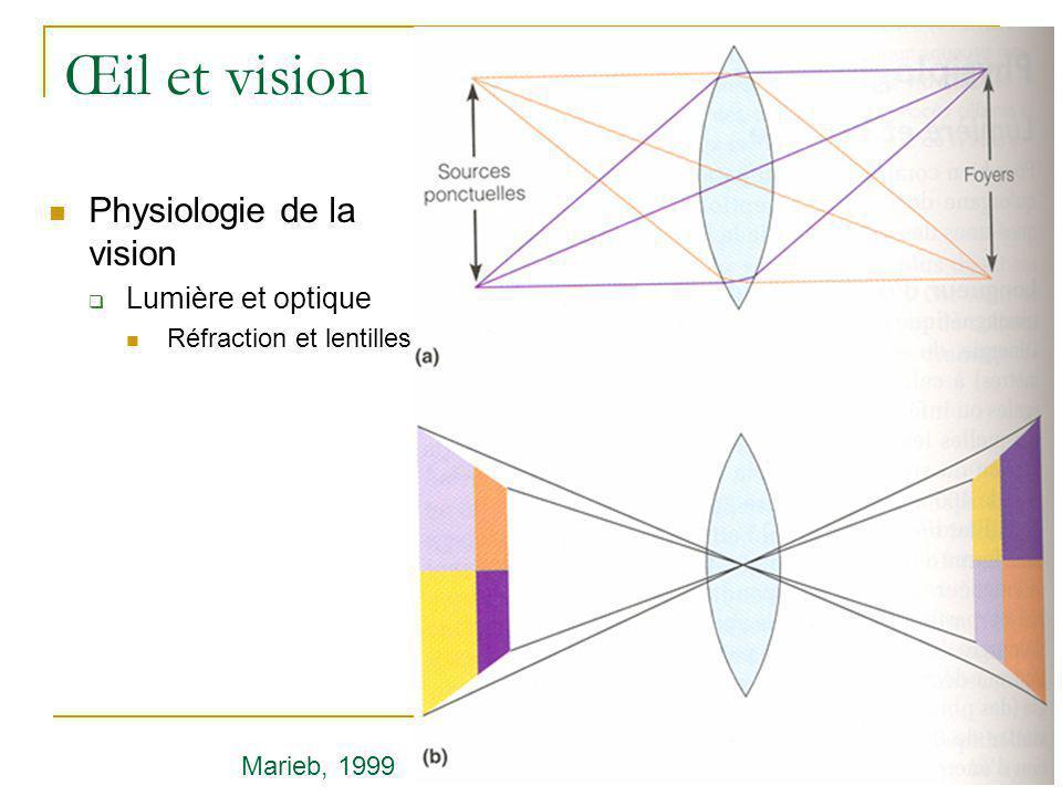 Œil et vision  Physiologie de la vision  Lumière et optique  Réfraction et lentilles Marieb, 1999