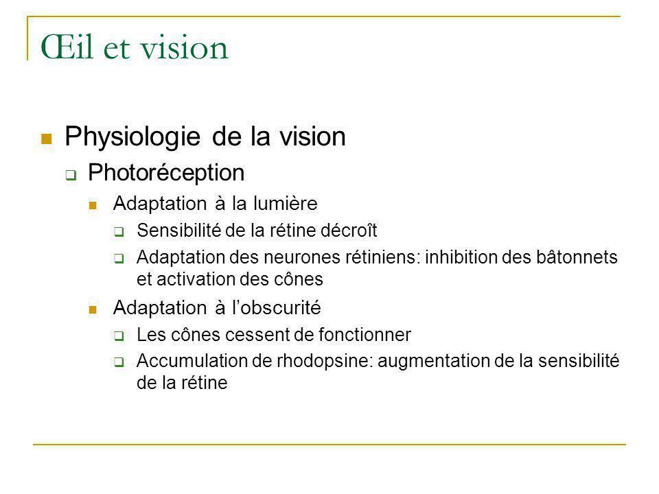 Œil et vision  Physiologie de la vision  Photoréception  Adaptation à la lumière  Sensibilité de la rétine décroît  Adaptation des neurones rétin