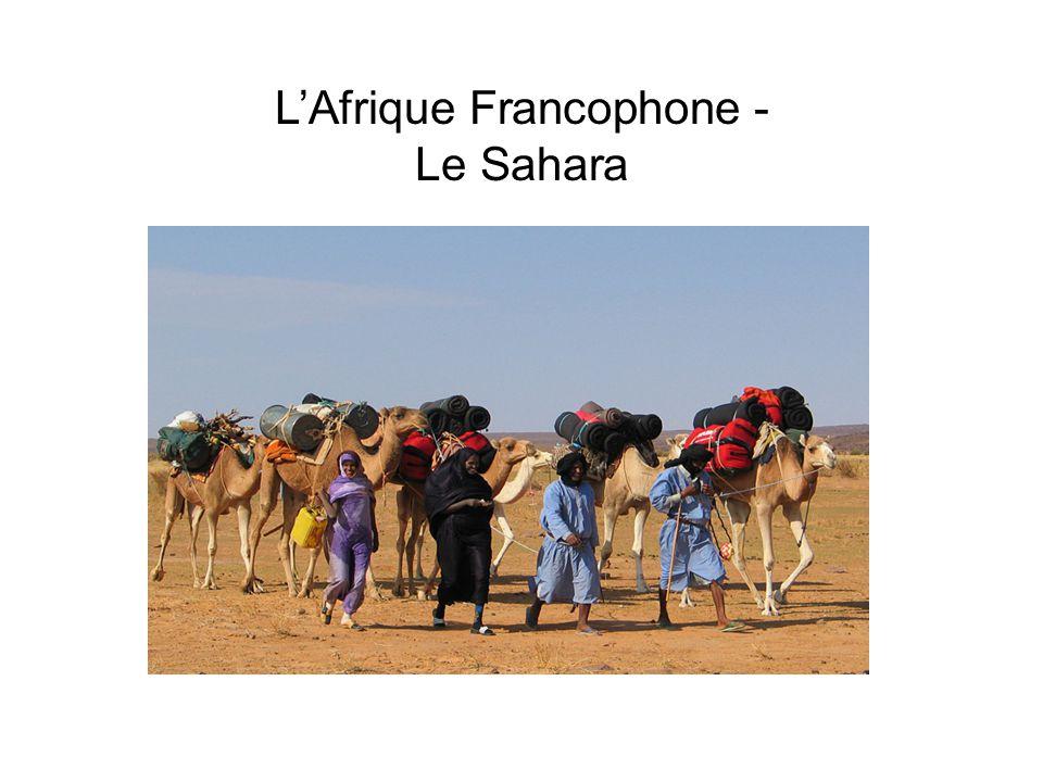 L'Afrique Francophone - Le Sahara