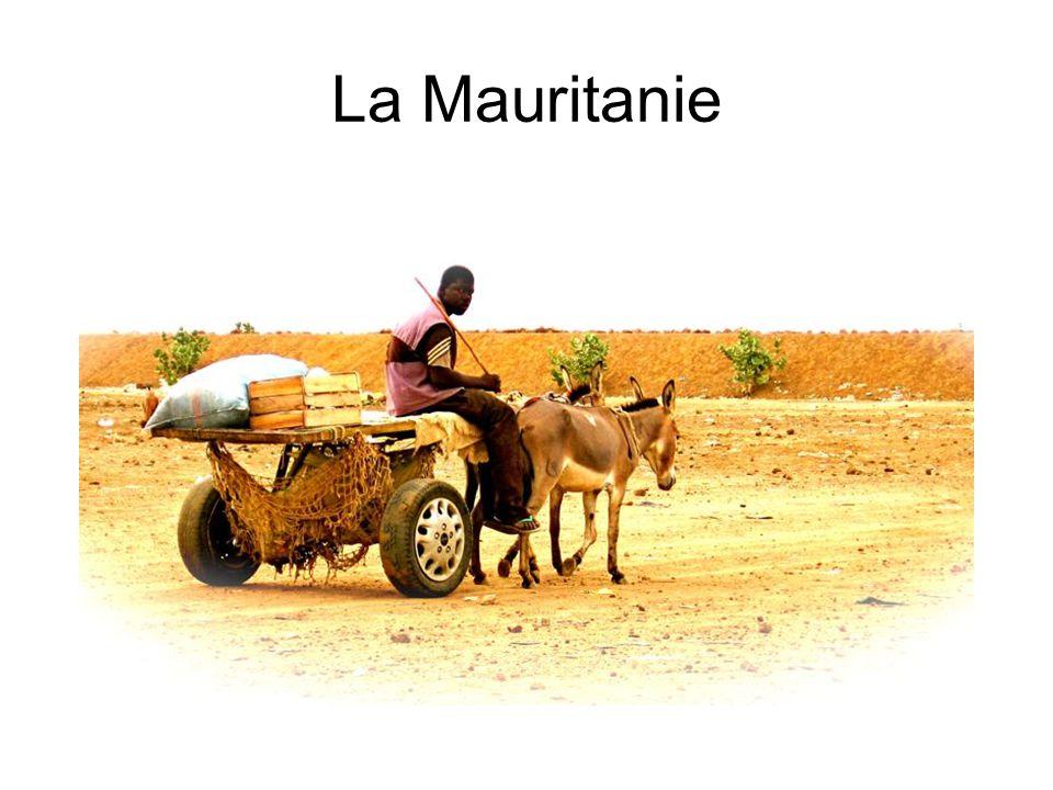 La Capitale - Nouakchott