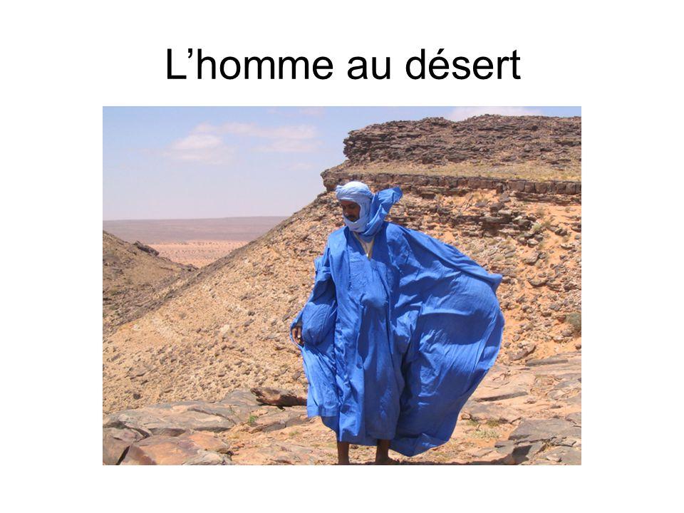 L'homme au désert