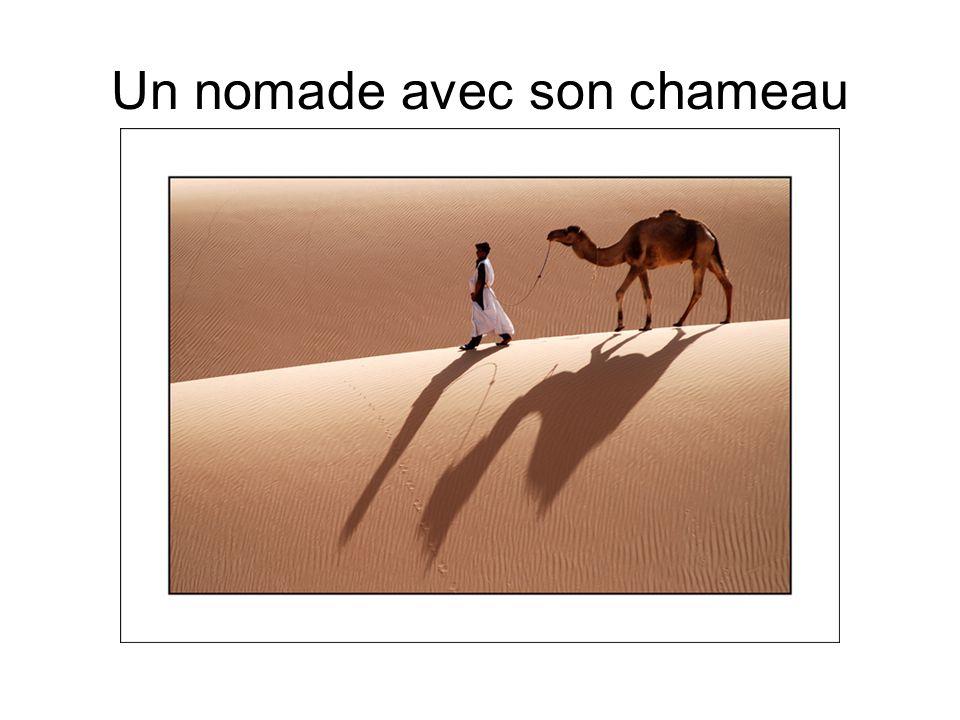 Un nomade avec son chameau