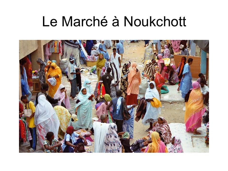 Un vieux mauritanien